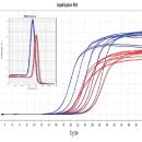 lnRcute lncRNA cDNA第一链合成试剂盒(去基因组)(KR202)